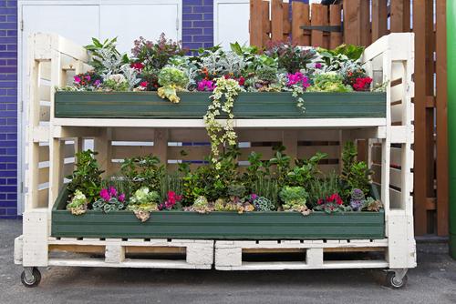 Záhrada z paliet